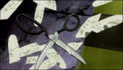 Scissors and clippings of Rakka's wings.
